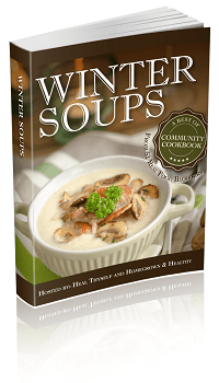 Wintersoup 3D eBook 200