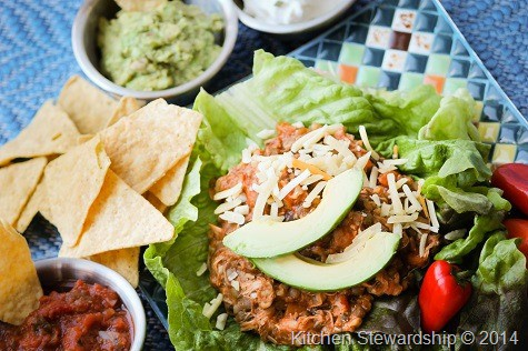 Slow Cooker Mexican Chicken Dish (43)