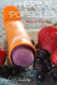 Immune Boosting Herbal Popsicles ~~ yummy AND good for you!