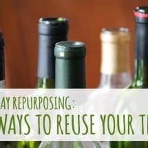 Use it or Lose it! 101 Ways to Reuse the Refuse