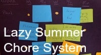 Lazy Summer Chore System
