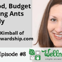 Podcast: My Best Real Food Rookie Tips + Strange Insect Killing Traffic