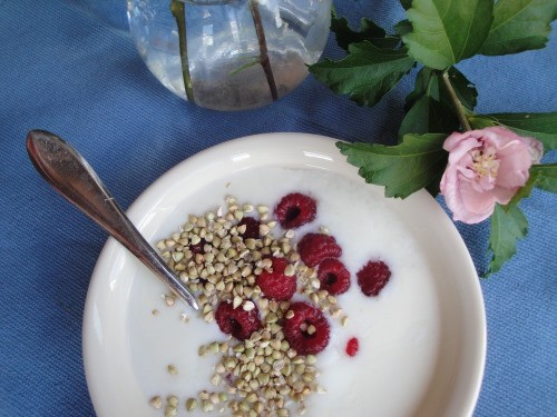 yogurt with gluten free buckwheaties