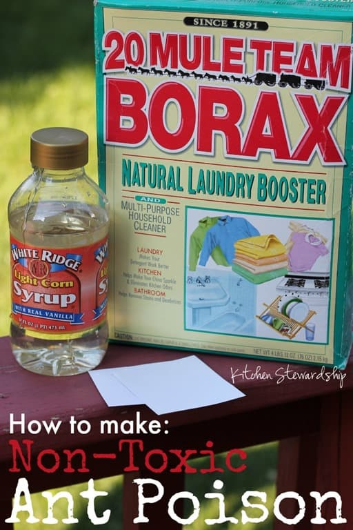 awesome Natural Ant Killer For Kitchen #3: How to Make Non-Toxic Homemade Ant Poison. Got little ants in the kitchen