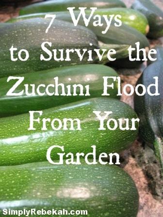 7 Ways to Survive the Zucchini Flood