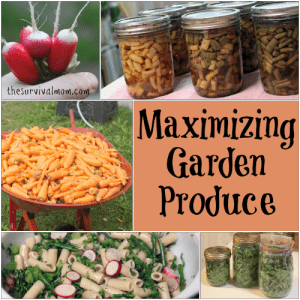 5 Tips for Maximizing Garden Produce