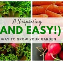A Surprising (and Easy!) Way to Grow Your Garden