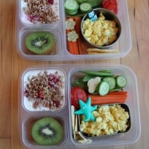 Healthy Lunch Packing for Rookies