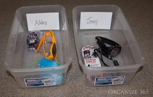 Organizing-using-bins-2