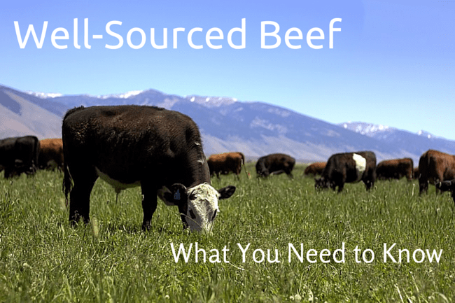 Well Sourced Beef: What You Need to Know (Finding a Farmer to Trust and Beef to Enjoy)