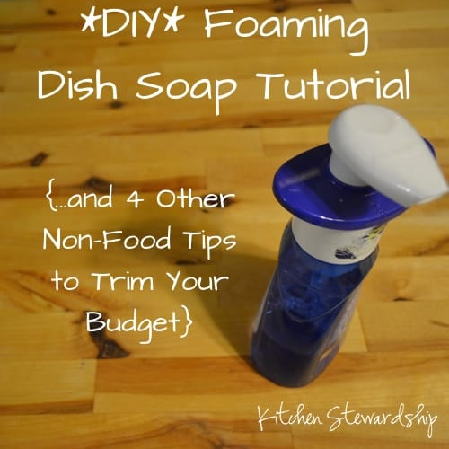 DIY Foaming Dish Soap - and 4 Other Non-Food Ways to Save Money :: via Kitchen Stewardship