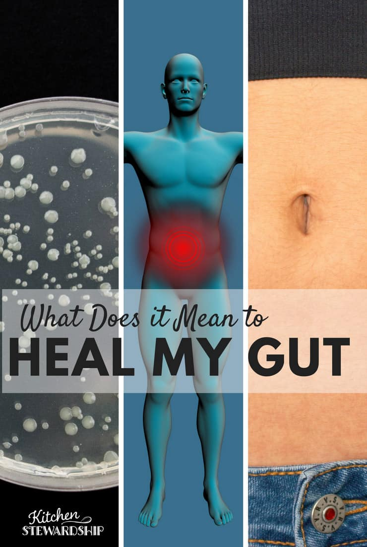 What The Heck Does It Mean If I Have To Heal My Gut
