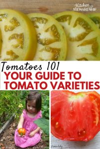 Your guide to tomato varieties according to color, flavor, and uses. Find out what types of tomatoes are best for what, and decide what kind to choose.
