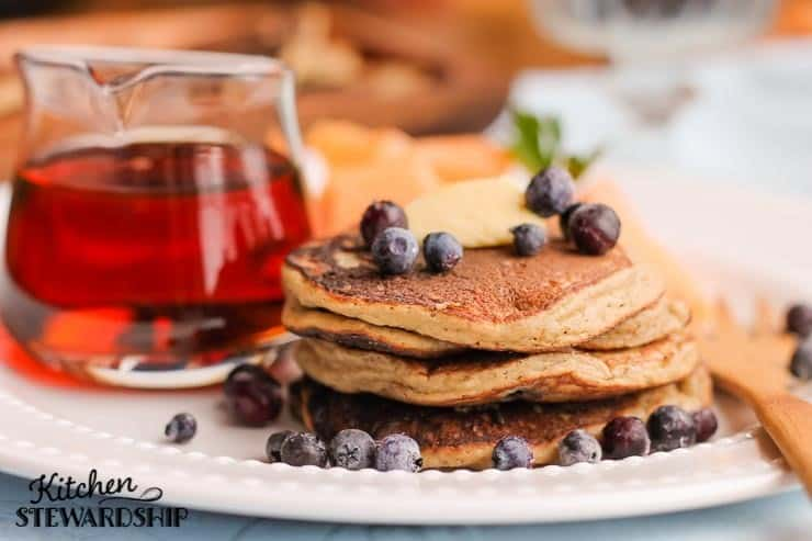 Blueberry Pancakes Grain free and Sweetener free with Coconut Flour