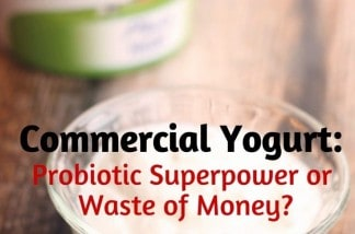 Store-Yogurt-Isnt-Dead-it-has-plenty-of-probiotics-for-your-healthy-diet.jpg