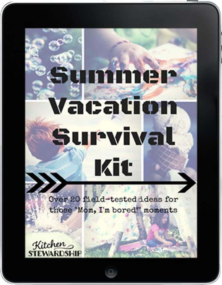 Summer Vacation Survival Kit