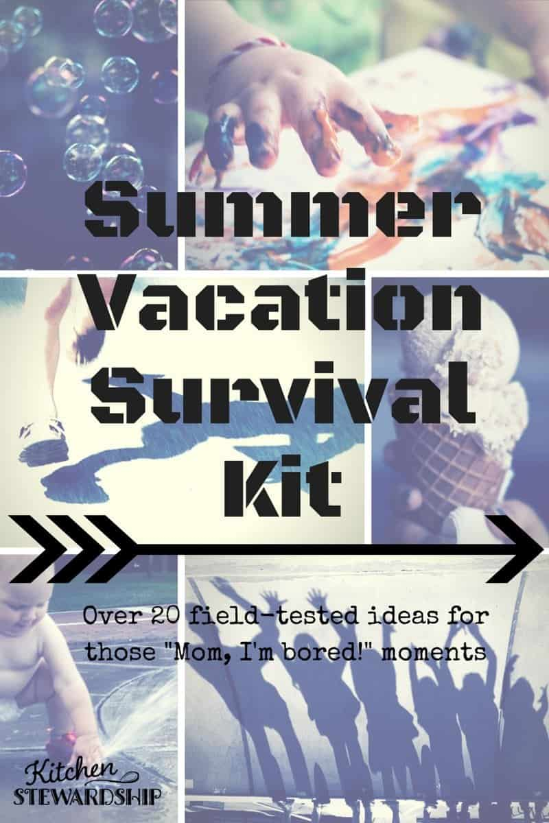 Summer Vacation Survival Kit new cover