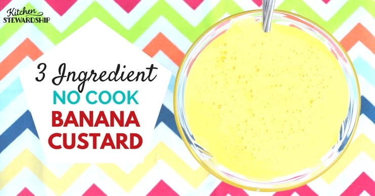 3 Ingredient no cook banana custard
