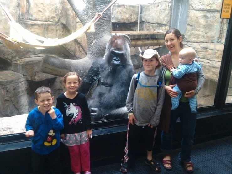 The Kimballs and their gorilla