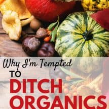 Why I'm Tempted To Ditch the Organic Foods Movement