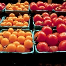 Healthy Food Resources in Michigan and the Midwest