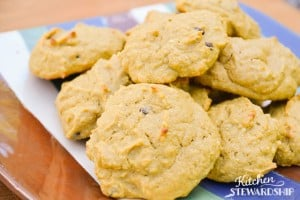 Gluten-Free Simple Soaked Squash Cookie Recipe