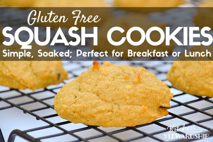 Gluten Free Simple Soaked Squash Cookie Recipe