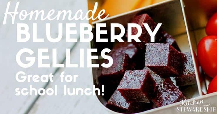 homemade blueberry gellies - Kitchen Stewardship