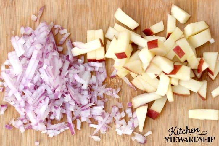 fermented apple salsa ingredients onion and apple