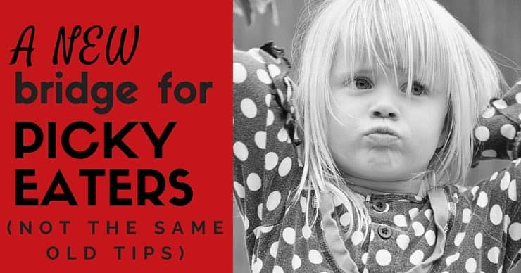 Tips for getting a picky eater to eat - more than just recipes or finding protein sources
