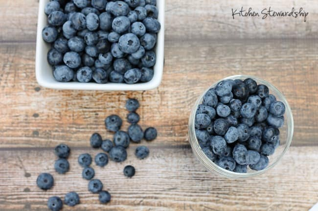 Blueberries - we U-pick them and freeze them for the winter!