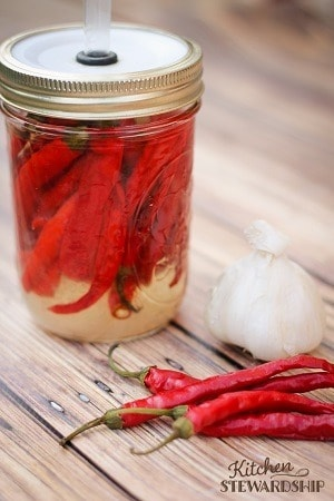 Homemade Fermented Cayenne Pepper Hot Sauce like Franks but with healthy probiotics