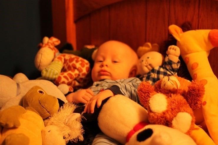 Too many stuffed animals