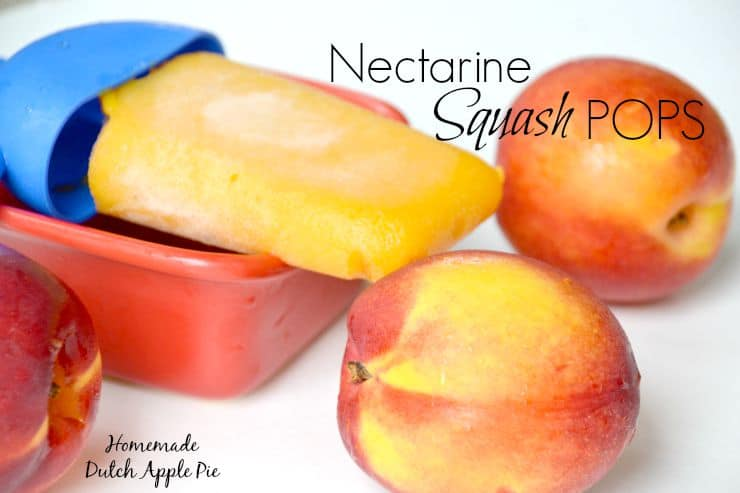 Nectarine Squash Pops Homemade Dutch Apple Pie