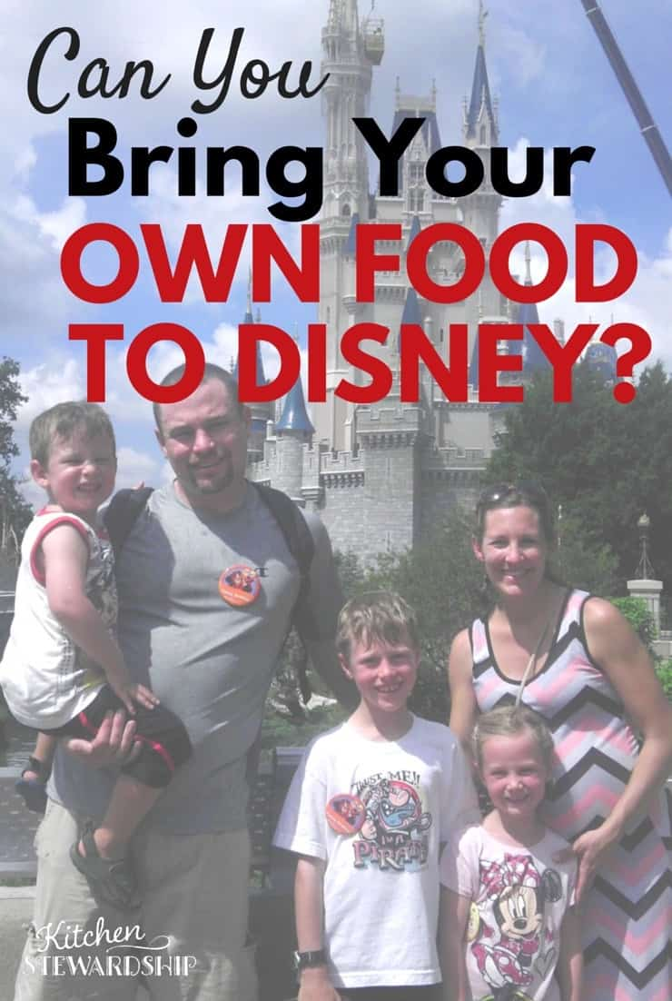 we took our own food to disney world don t assume you can t take food into disney theme parks you