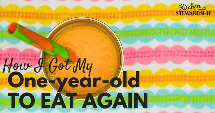 How I Got My One Year Old To Eat Again 2