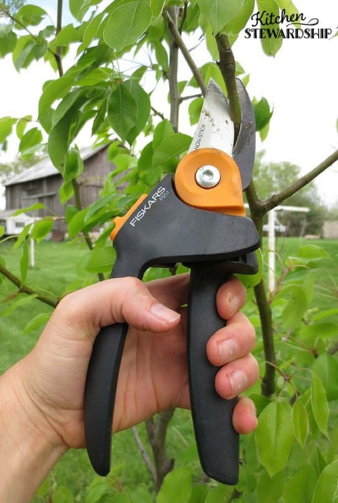 Fiskars Shears Help Get Your Gardening Done