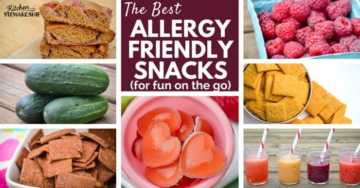 The Best Allergy Friendly Snacks For Your Road Trips And Summer Fun
