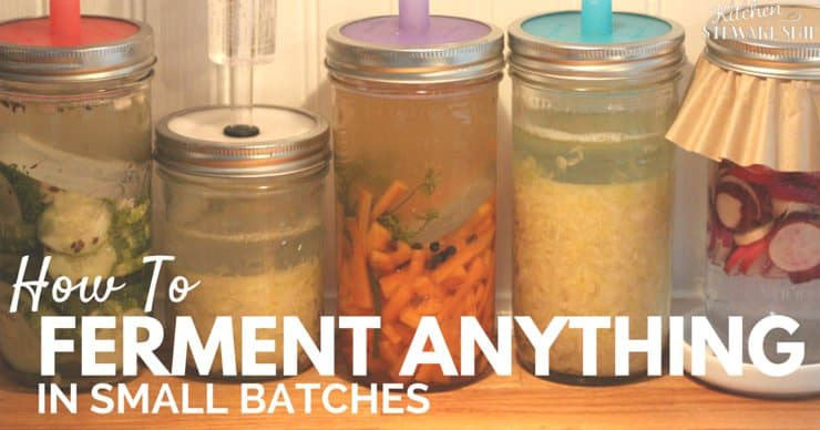How to Ferment Anything in Small Batches