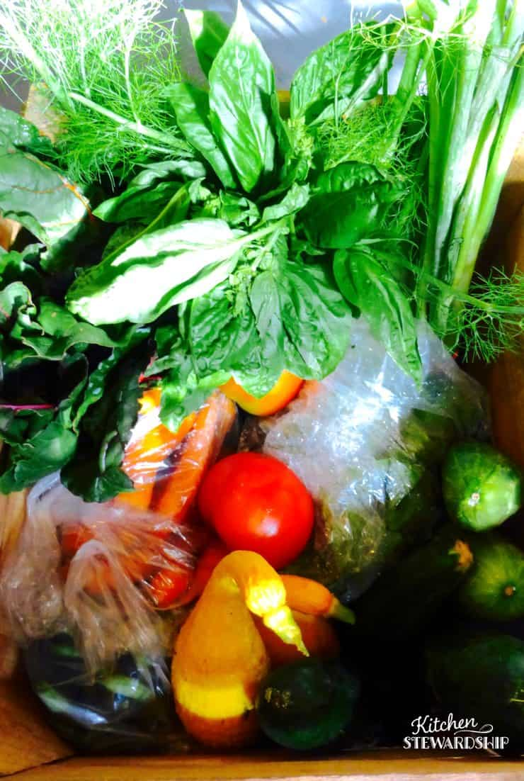 What came in my CSA box for the week - and how to make sure I USE all those CSA vegetables!