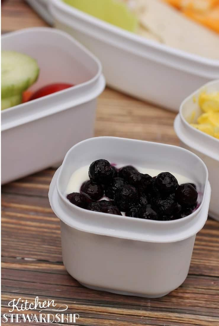 Homemade Yogurt in a Rubbermaid Lunch Container