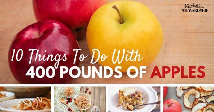 20 Easy Ways to Eat, Preserve and Freeze Apples – with No Sugar!