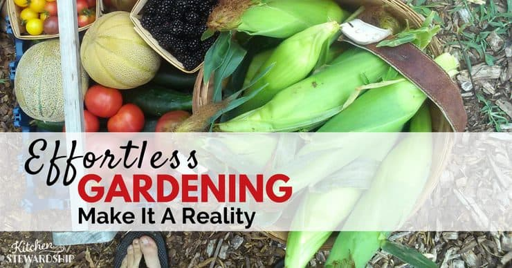 Make Effortless Gardening a Reality - Back to Eden Garden