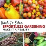 Who knew gardening could be this easy?!?-Back to Eden gardening method and tips