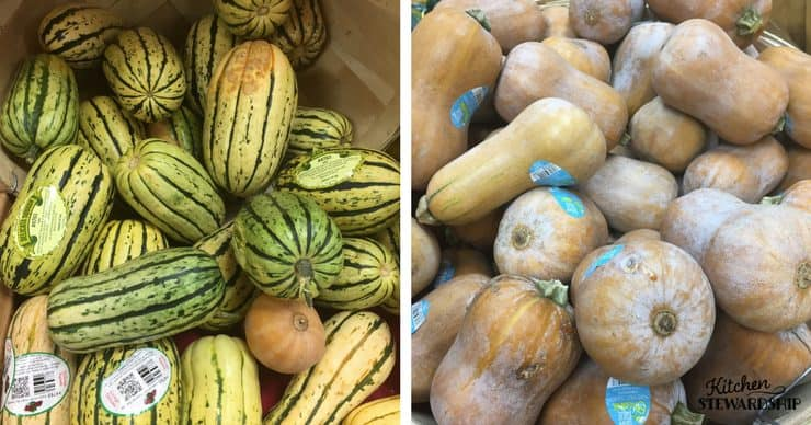 Bins of butternut squash and sunshine squash