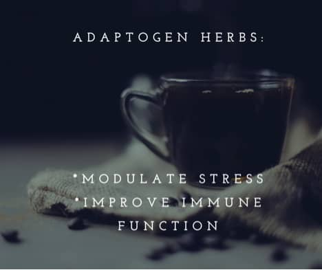Women's Wellness series - how and when to use adaptogen herbs to help adrenals.