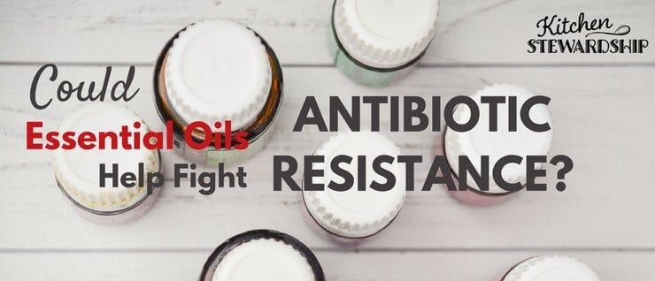 Essential Oils may help in the fight against antibiotic resistance!