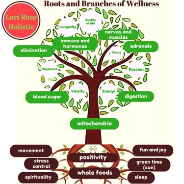 Roots and branches of Wellness