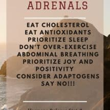 Adrenal Amends – Support for Stressful Times {Women's Wellness GUEST Series}