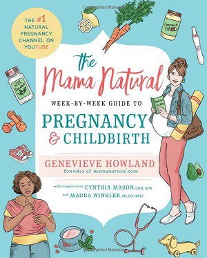 Natural Guide to Pregnancy and Childbirth book